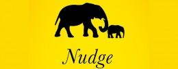 Nudge Архитектура выбора
